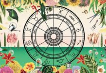 Кімнатні рослини: які квіти підходять по знаку Зодіаку