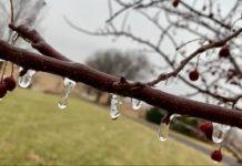 Яку зиму передбачають синоптики?