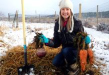 Коли під зиму сіяти буряк і моркву у листопаді 2020 року? Точні дати і погодні умови