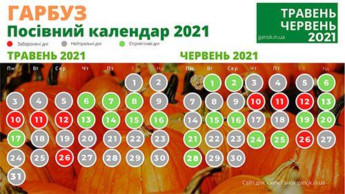 Коли сіяти гарбуз сприятливі дні в травні 2021 і червні 2021. Посівний календар 2021