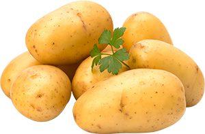 Місячний календар картоплі. Коли садити картоплю сприятливі і несприятливі дні