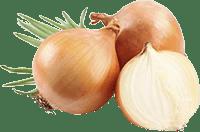 Посівний календар 2021 коли садити цибулю сприятливі дні