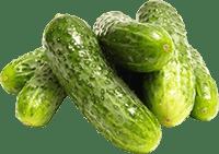 Огірки: підживлення рідким компостом