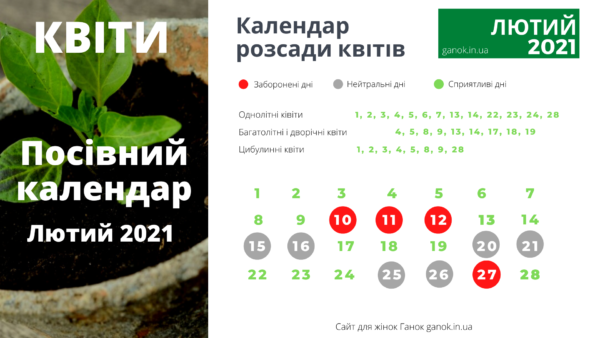 посівний календар квіти лютий 2021