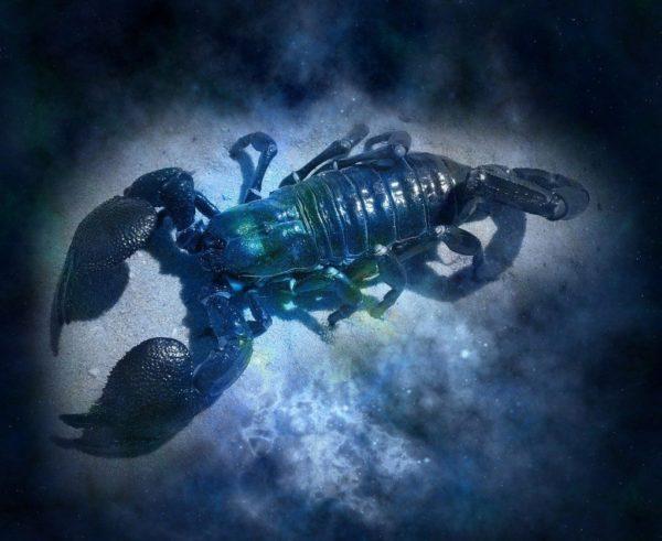 Гороскоп для Скорпіона на 2021 рік: на зщо звернути увагу