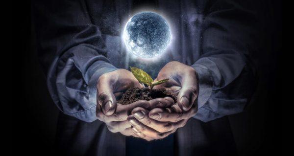 Що робити на городі і в саду 2 і 3 жовтня 2020 року