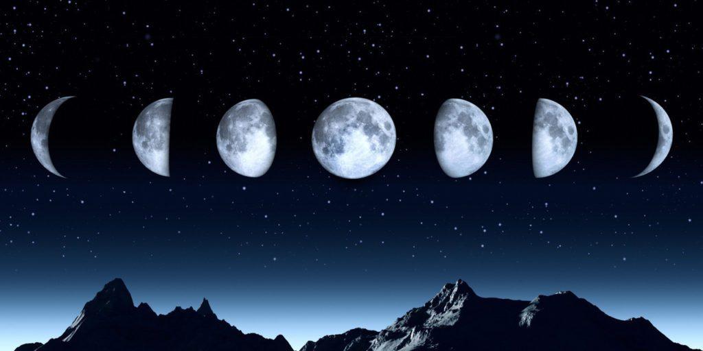 Місячний посівний календар на травень 2020 року: роботи на кожен день місяця