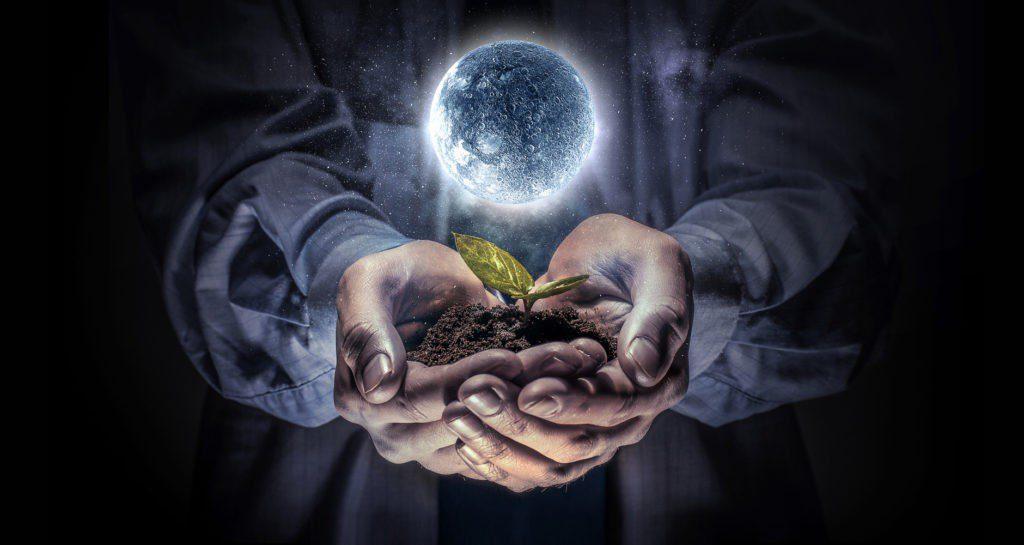Місячний посівний календар городника на березень 2020 року
