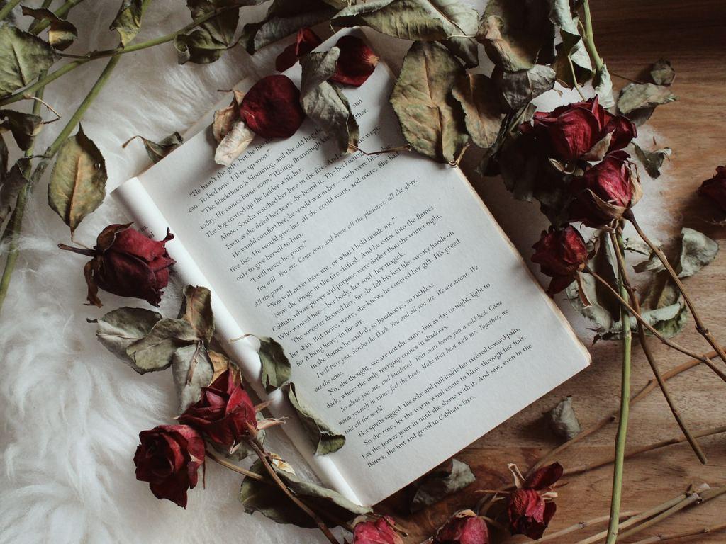 Афірмації від самотності на кохання