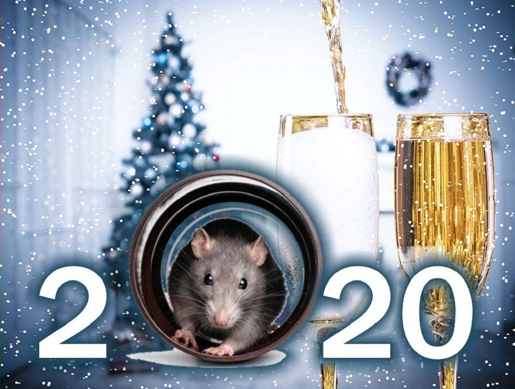 Рік Білого Металевого Щура 2020: коли настає і що несе